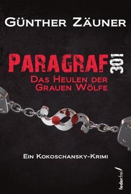 Cover von: Paragraf 301