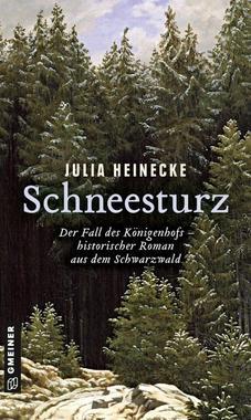 Cover von: Schneesturz